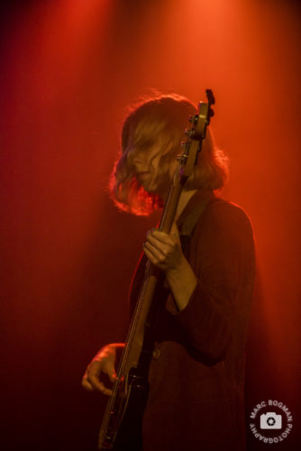 stonefield bassiste